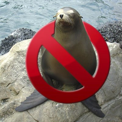 No seals were used in the creation of this website